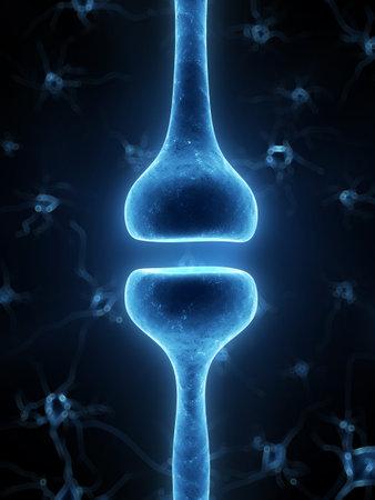 3d rendered illustration of a human receptor illustration