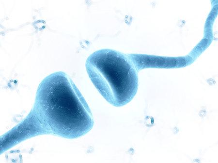 human nervous system: 3d rendered illustration of a human receptor