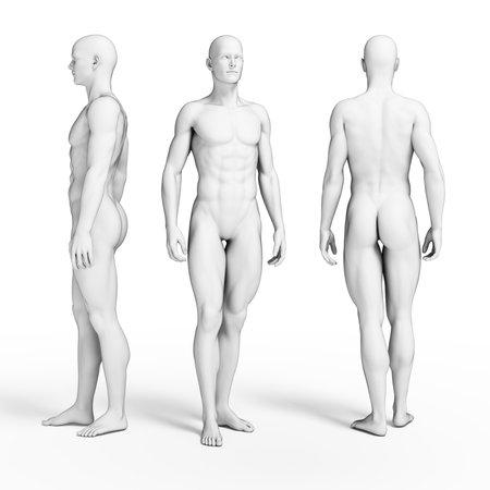 model posing: 3d rendered illustration of some fitness guys