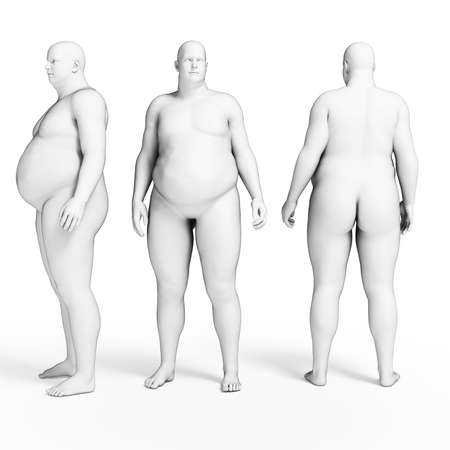 physiology: 3d rendered illustration of some overweight men