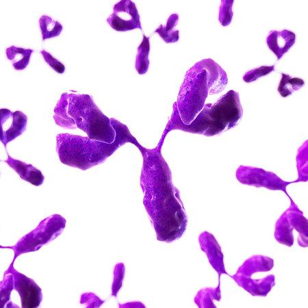 immune system: 3d rendered illustration of antobodies Stock Photo