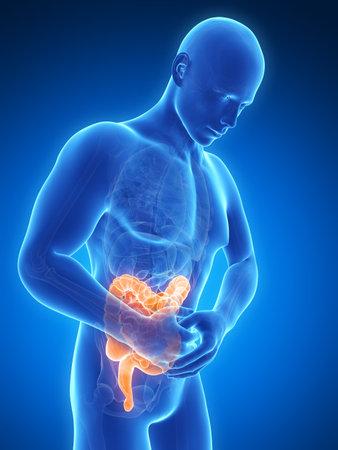 intestino: 3d rindi? la ilustraci?n de un hombre que tiene dolor de est?mago Foto de archivo