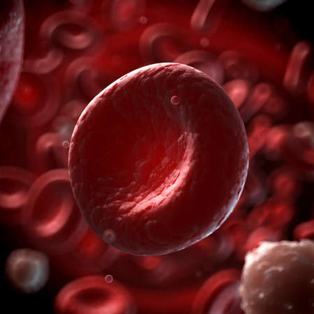 white blood cell: 3d rendered illustration of the human blood