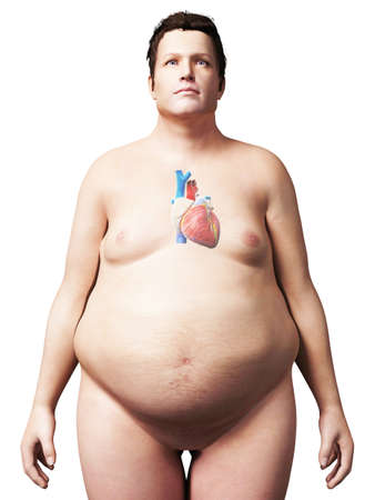 slob: 3d rendered illustration of an overweight man - heart
