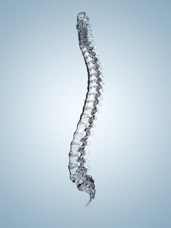 cervical: 3d rendered illustration of a glass spine