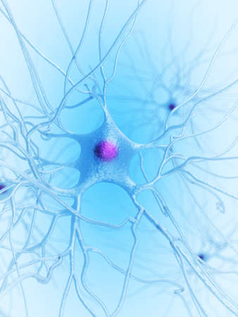 neural: 3d rendered illustration of a nerve cell