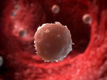 vasos sanguineos: 3d rindió la ilustración de un glóbulo blanco