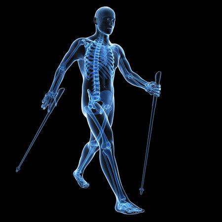 3d teruggegeven medische illustratie - nordic walking Stockfoto