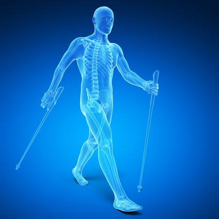 3d rindió la ilustración médica - nordic walking