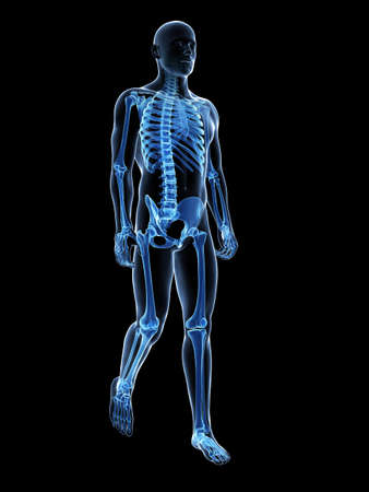 3d rendered medical illustration - walking guy Stock Photo