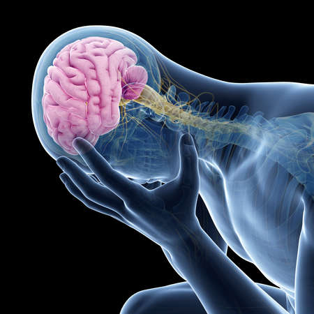 depressie illustratie - zichtbare anatomie Stockfoto
