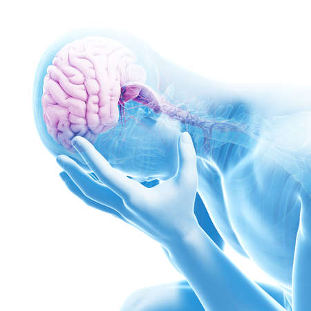 depression illustration - visible anatomy Reklamní fotografie - 23222149