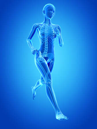 medical 3d illustration - female jogger with visible bones Stock Photo