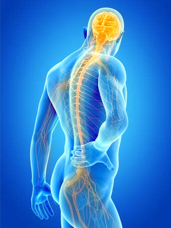 a man having acute pain in the back