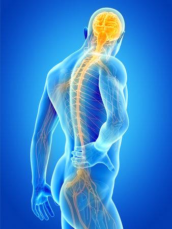 een man met acute pijn in de rug Stockfoto