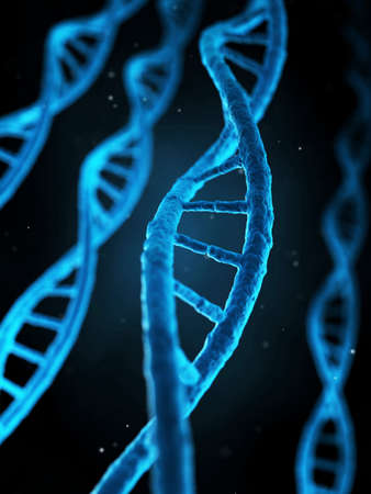 medical illustration of the human genes