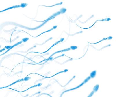 Illustrazione medico accurato di spermatozoi umani Archivio Fotografico - 45345953