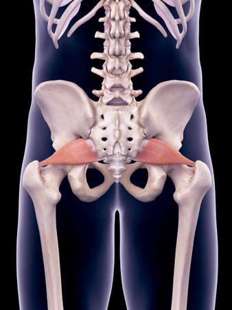 이상근의 의학적으로 정확한 그림