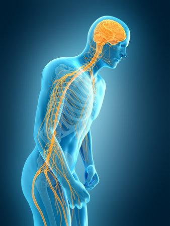 medically accurate 3d illustration of parkinson 版權商用圖片 - 58803041