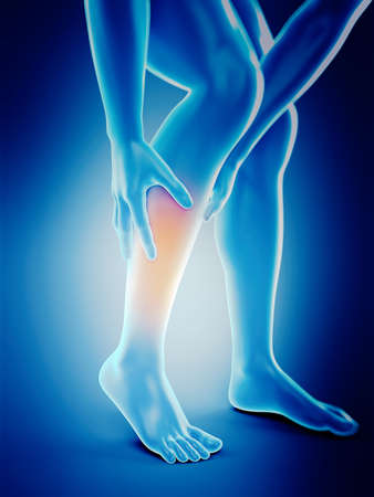 medically accurate 3d illustration of calf pain
