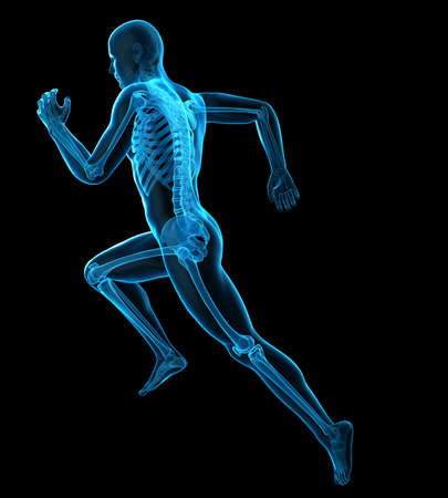 3d rendered medically accurate illustration of a runner´s bones 写真素材