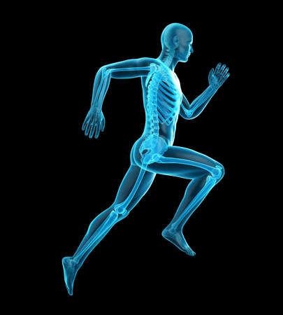 3d rendered medically accurate illustration of a runners skeleton Stock Illustration - 60247594