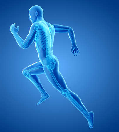 3d rendered medically accurate illustration of a runners skeleton Stock Illustration - 60247636