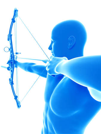 3d rendered medically accurate illustration of an archer Stock Illustration - 87342389