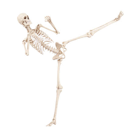 3d rendered medically accurate illustration of a kicking skeleton 版權商用圖片