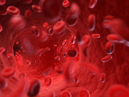 3d rendered, medically accurate illustration of the human blood