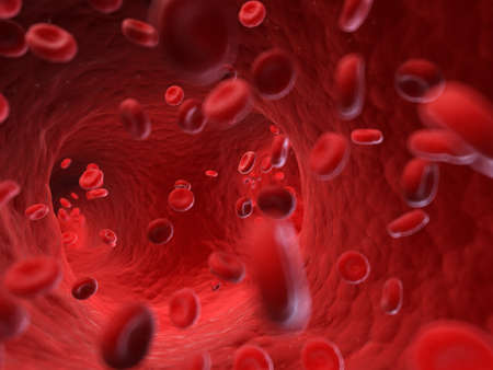 3d rendered, medically accurate illustration of human blood cells Stock Photo