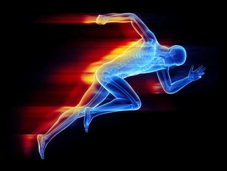 3d rendered, medically accurate illustration of a sprinter