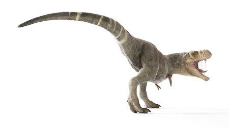 3d rendered illustration of a T-rex