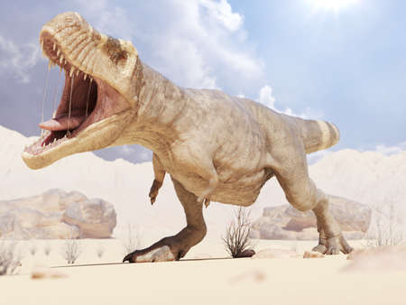 3d rendered illustration of a T-rex in the desert 스톡 콘텐츠