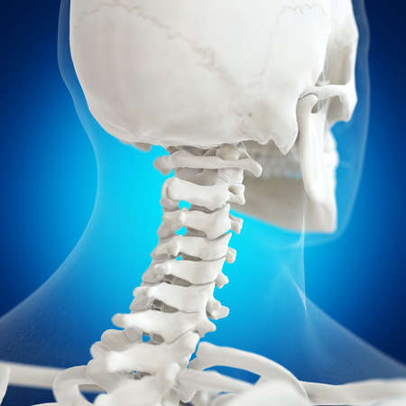 3d rendered medically accurate illustration of the atlas bone