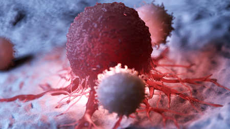 3d rendered medically accurate illustration of white blood cells attacking a cancer cell Foto de archivo - 108640594