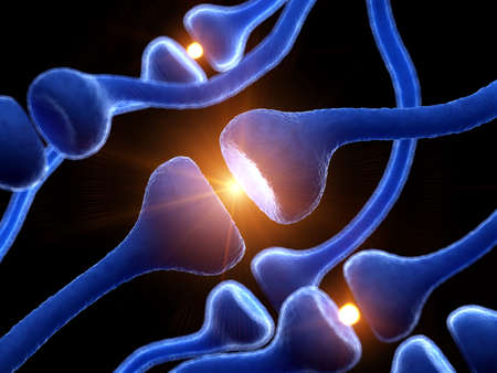 3d rendered medically accurate illustration of human receptors Stock Photo