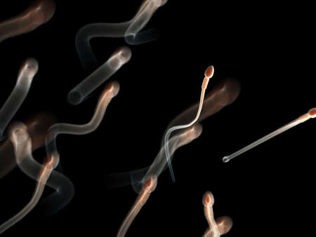 3d rendered medically accurate illustration of human sperm