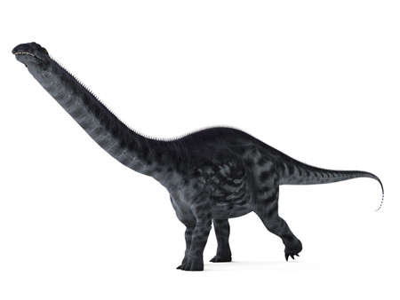 3d rendered illustration of a apatosaurus