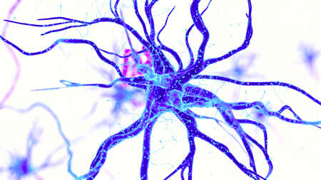 3d rendered medically accurate illustration of a human nerve cell on white background