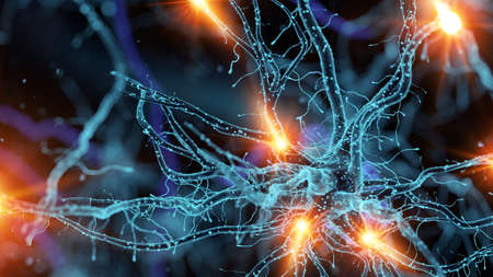 3d rendered medically accurate illustration of a nerve cell
