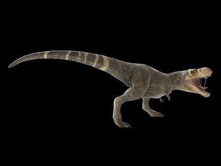 3d rendered illustration of a T-rex on black background
