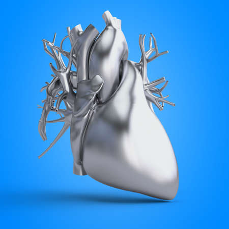 3d rendered illustration of a heart