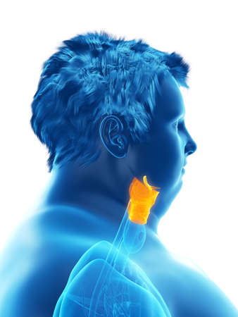 3d rendered medically accurate illustration of an obese mans larynx Stock Illustration - 111505269