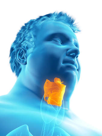 3d rendered medically accurate illustration of an obese mans larynx Stock Illustration - 111505402