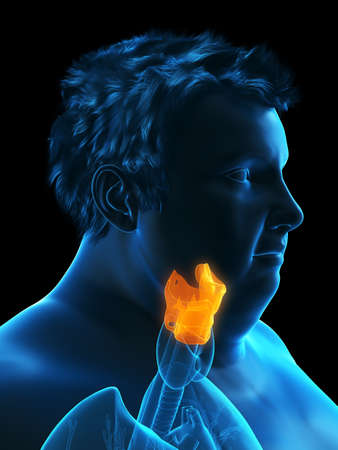 3d rendered medically accurate illustration of an obese mans larynx