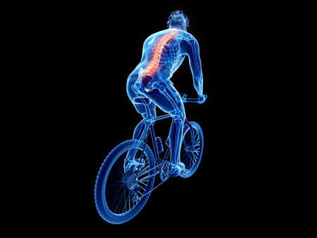 3d rendered illustration of a cyclists spine