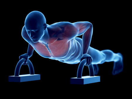 3d rendered medically accurate illustration of a man doing pushups Stock Photo