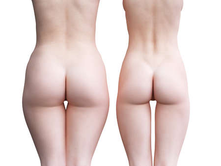 3d rendered medically accurate illustration of a big and a small female butt 스톡 콘텐츠