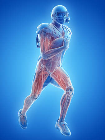 3d rendered medically accurate illustration of the muscle system of an american football player Banco de Imagens